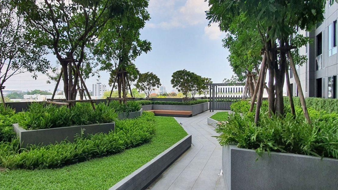 Nue Noble Chaengwattan garden